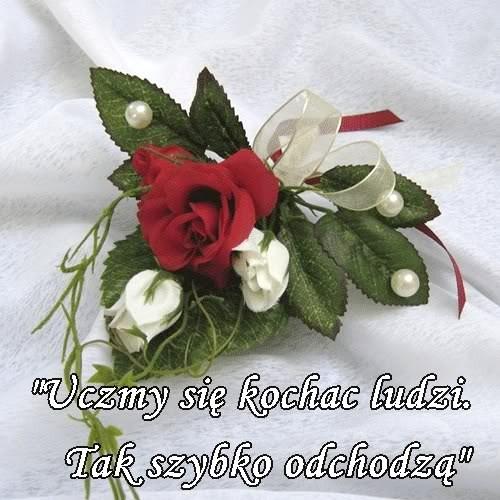 blog_pf_3830747_4917538_tr_uczmy_sie